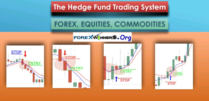 Hedge Fund Trading System Forex Forex Training Trading