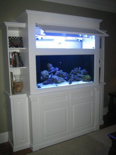 Fish Tank Stand Designs | Stands  Bookshelf Aquarium Stand u0026 Canopy Plans : aquarium canopy ideas - memphite.com