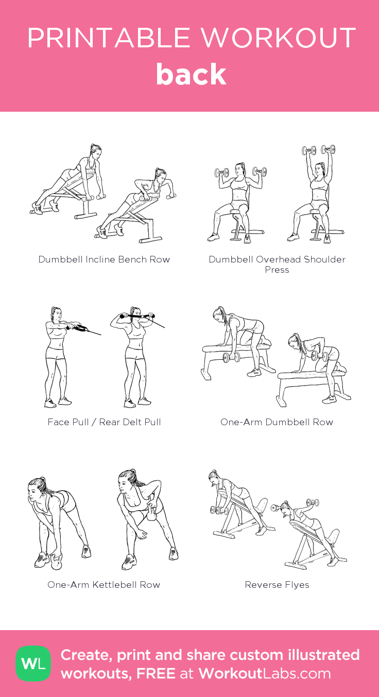 back · WorkoutLabs Fit        back · WorkoutLabs Fit,Fitness & Body Forming  back: my visual workout...