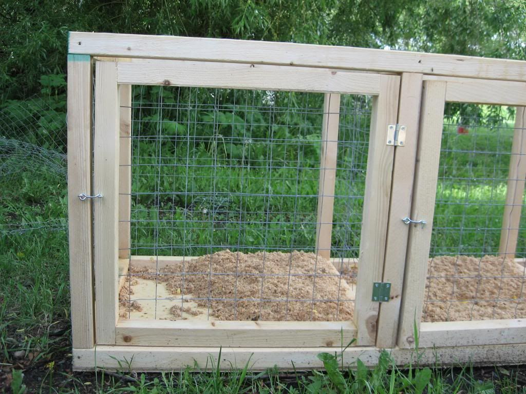 125 best chickens images on pinterest backyard chickens raising