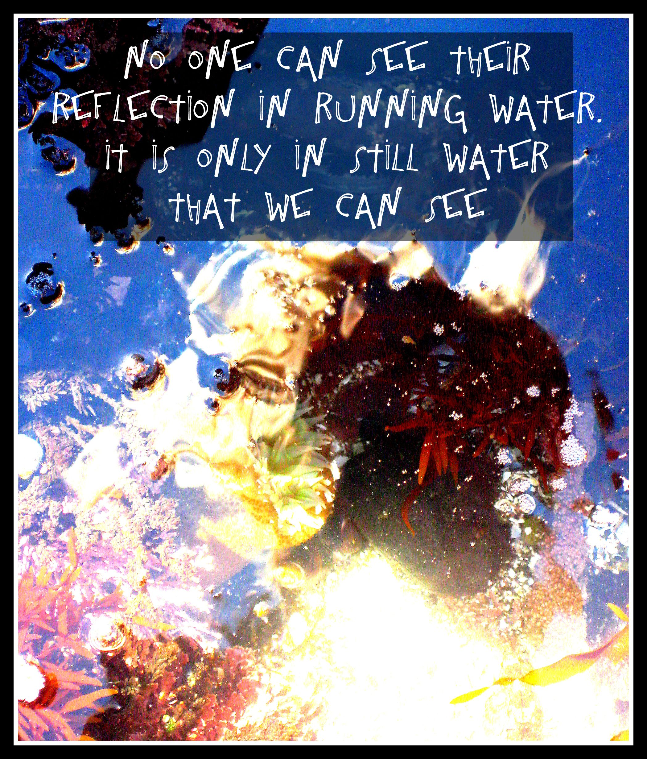 Erin Rae Photography Photography Quote Water Reflection Erin