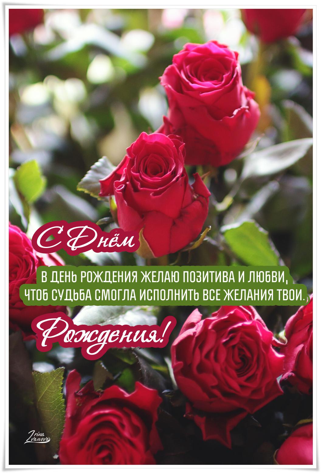 Pozdravleniya S Dnem Rozhdeniya Krasivye V Proze Zhenshine Muzhchine Podruge Mama Sestre Happy Birthday Beautiful Happy Anniversary Birthday Cards