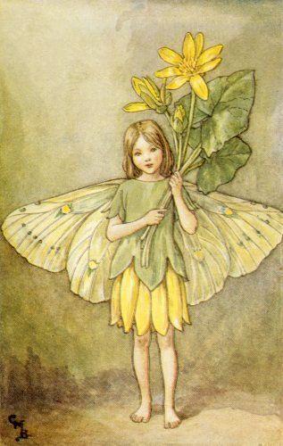 Risultati immagini per celandine fairy
