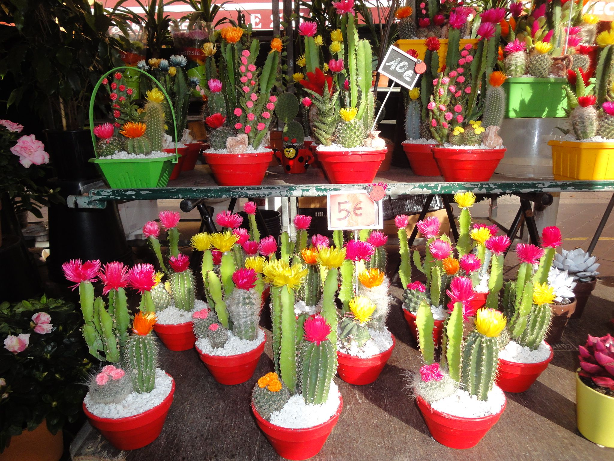 More flowers in Nice flower market