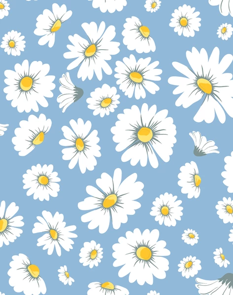 Daisy Bloom Removable Wallpaper Cornflower Spring Desktop