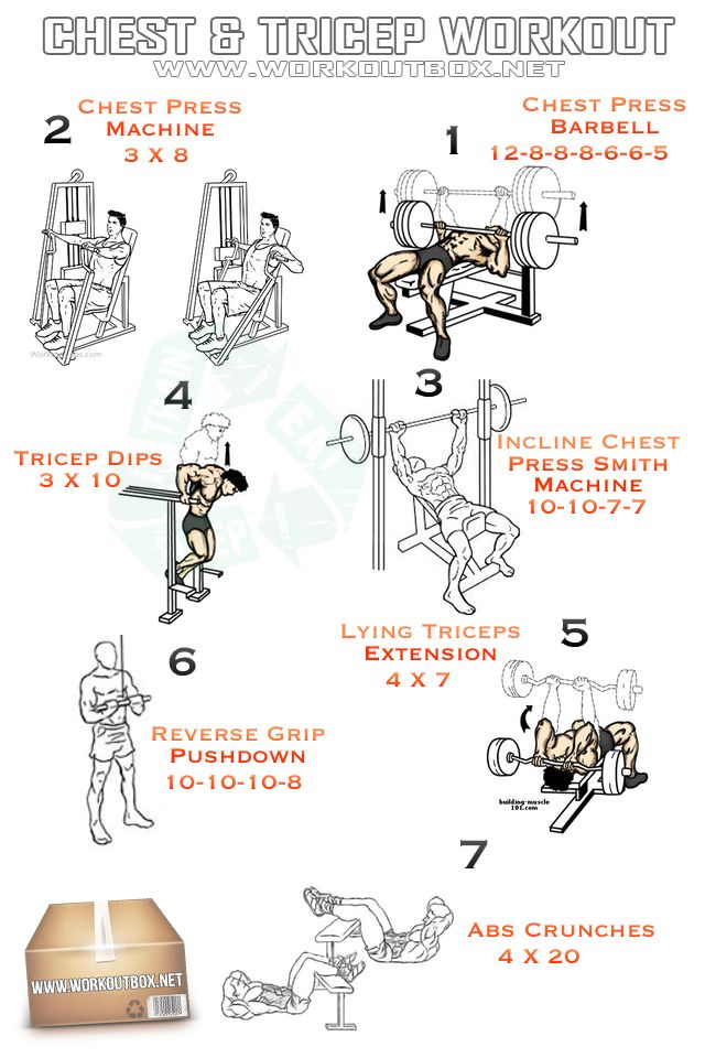 Chest and tricep workout personal training pinterest gym workouts