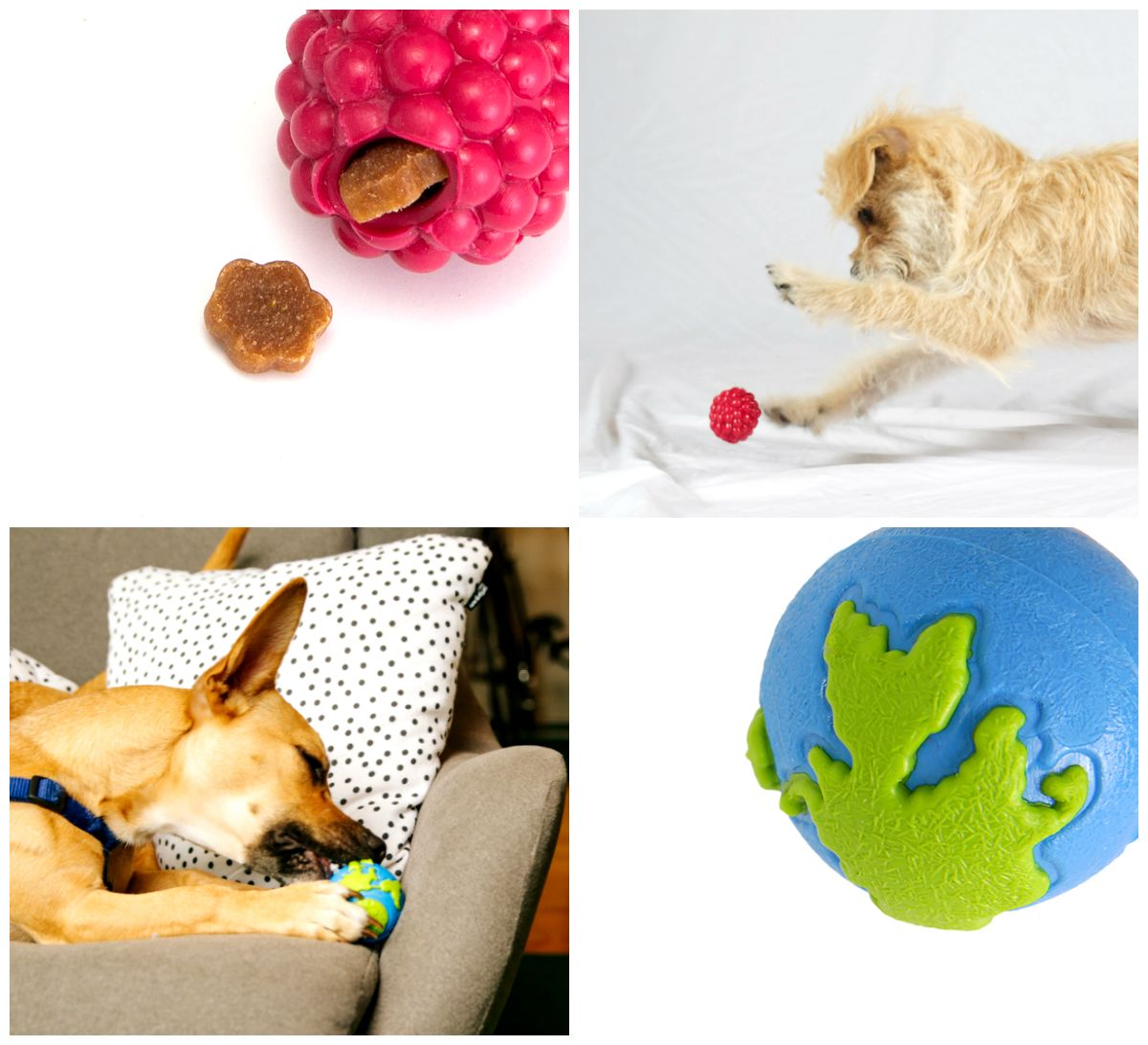 The Easiest Way To De-Drool Your Dog's Stanky Toys