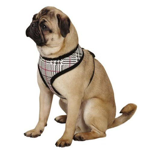 Zack Zoey Heritage Collection Dog Harness Small Black You Can