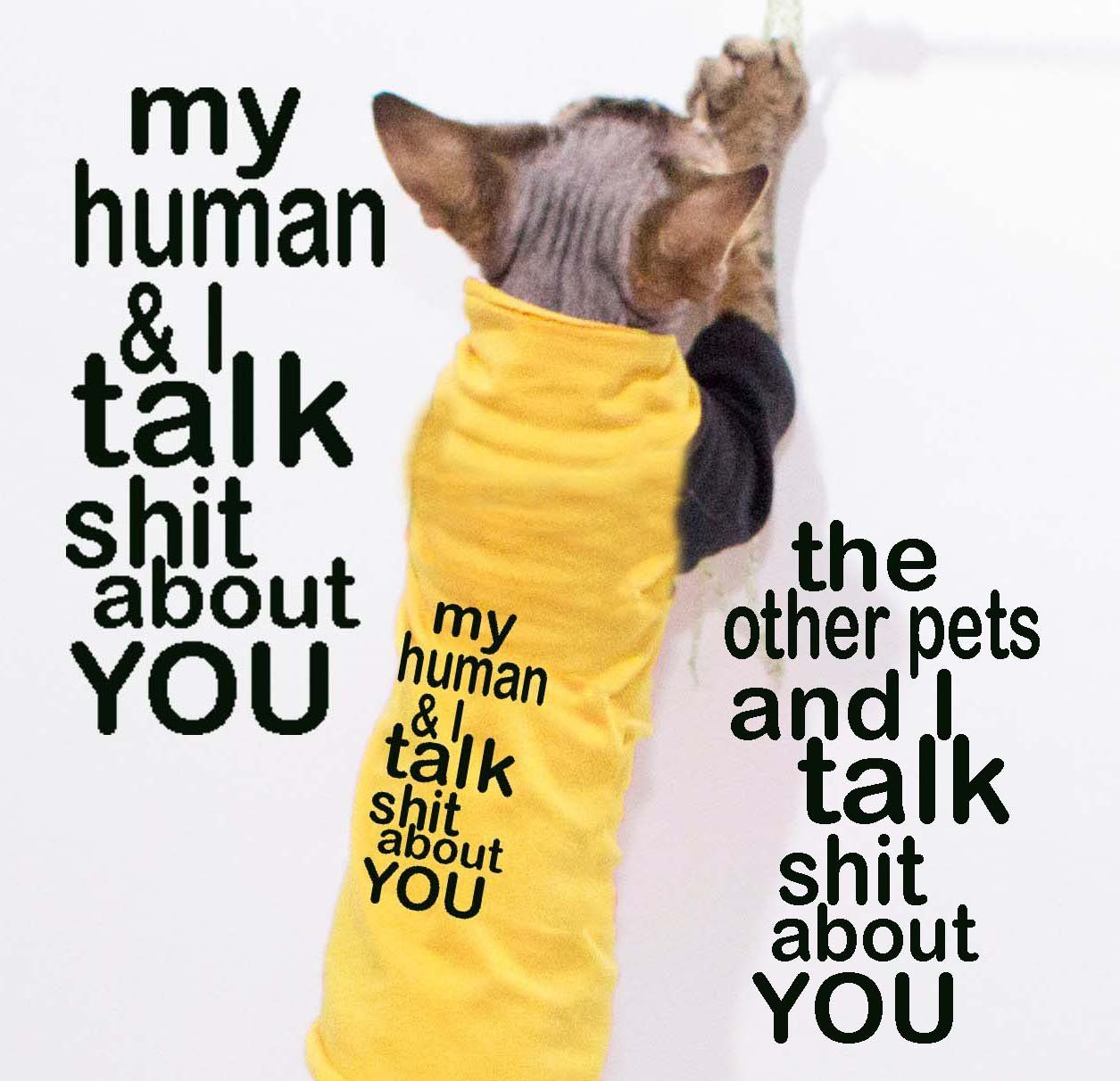 My human and I talk sh*t about you Tee for cats Products