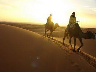 deserto arabe - Bing Imagens