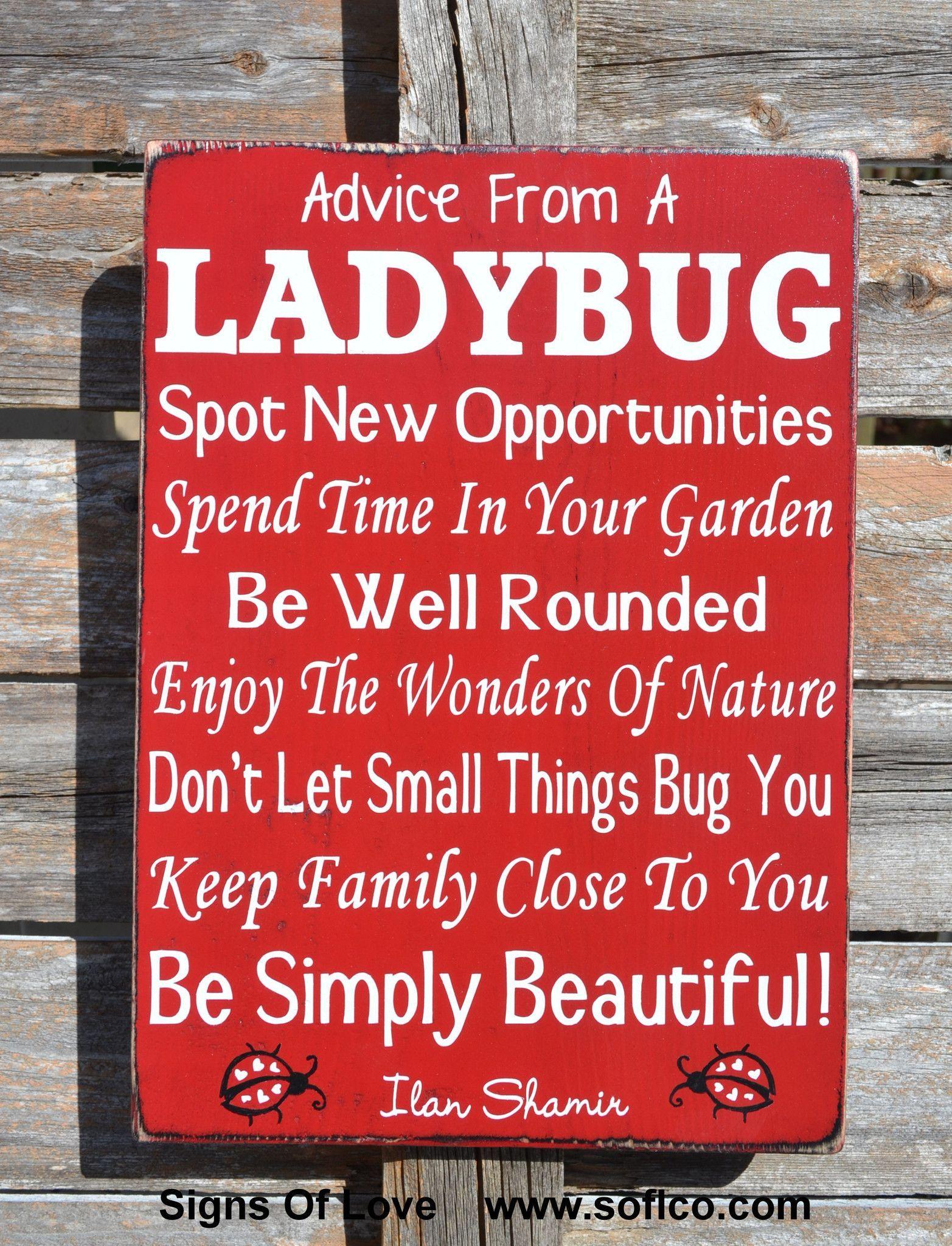 Advice From A Ladybug Wood Sign, LARGE Custom Wood Sign Outdoor Porch  Gardener Garden Art