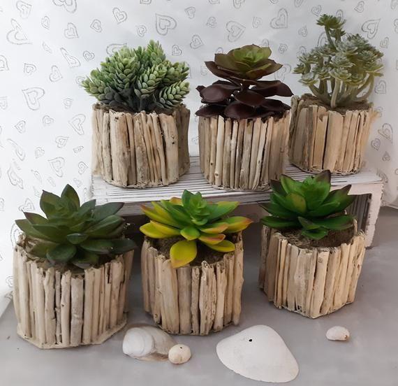 Photo of Beach, Nautical, Coastal decor. Faux succulents. Succulents. Indoor plants. Faux succulents in custom driftwood planters.