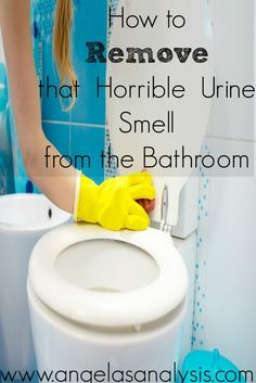 How To Remove That Horrible Urine Smell From The Bathroom - How to get rid of urine smell in bathroom