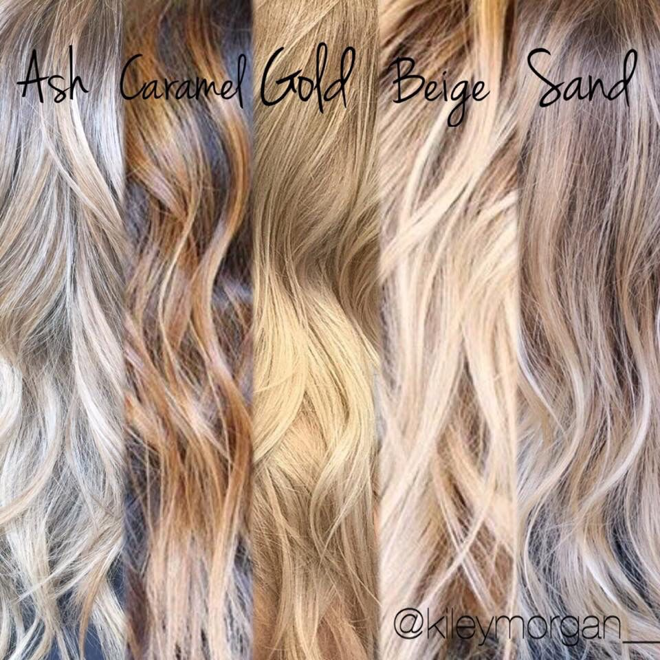 Different tones of blonde tips for clients when your a hair stylist cosmetology pinterest - Les differents blonds ...