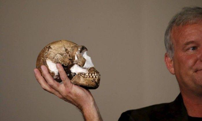 Nova espécie humana é descoberta em caverna sepulcral na África do Sul - Jornal O Globo