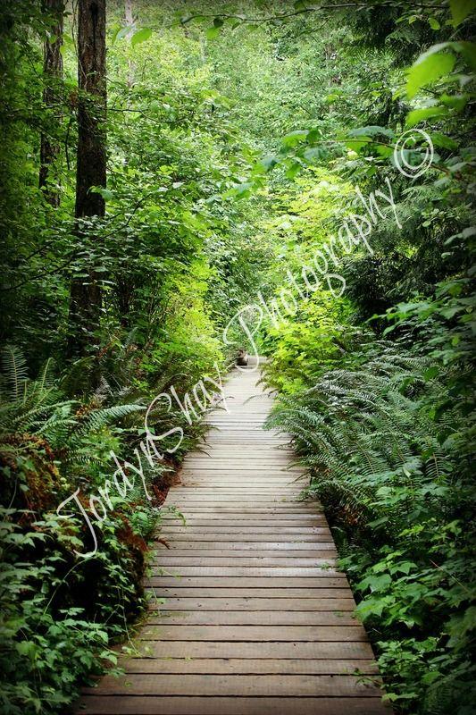 Milner Gardens, Parksville, Qualicum, Green, Boardwalk, Trail, BC, Canada by JordynShay Photography