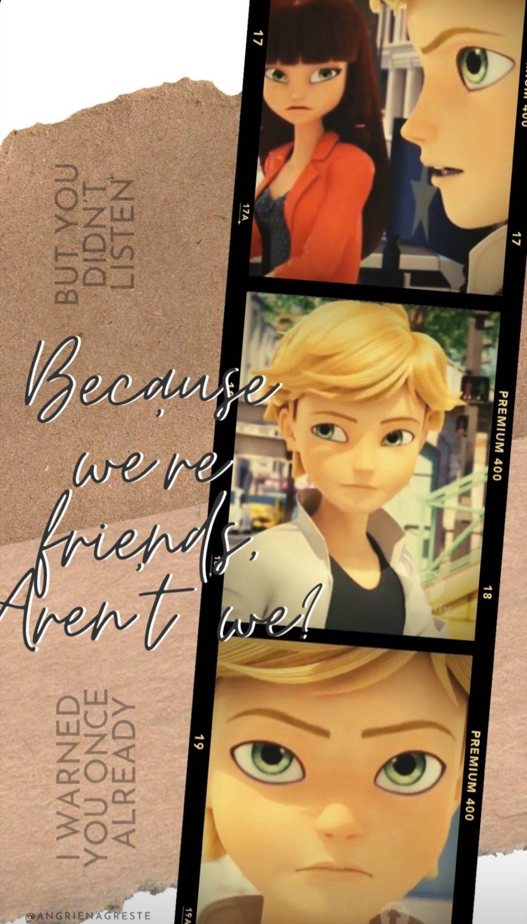 Adrien Agreste Wallpaper