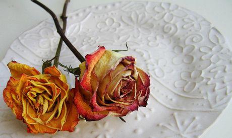 Como Secar Un Ramo De Rosas Sencillamente Jpg Flores Secas Ramo De Flores Secas Rosas