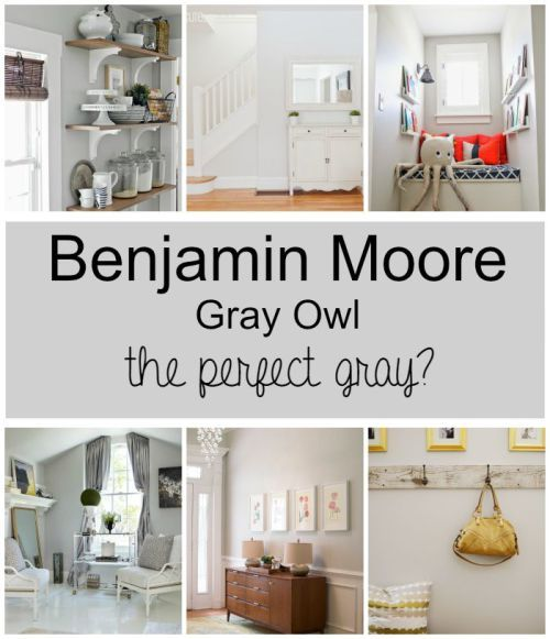 Benjamin Moore Gray Owl This Color Seems To Go With Everything