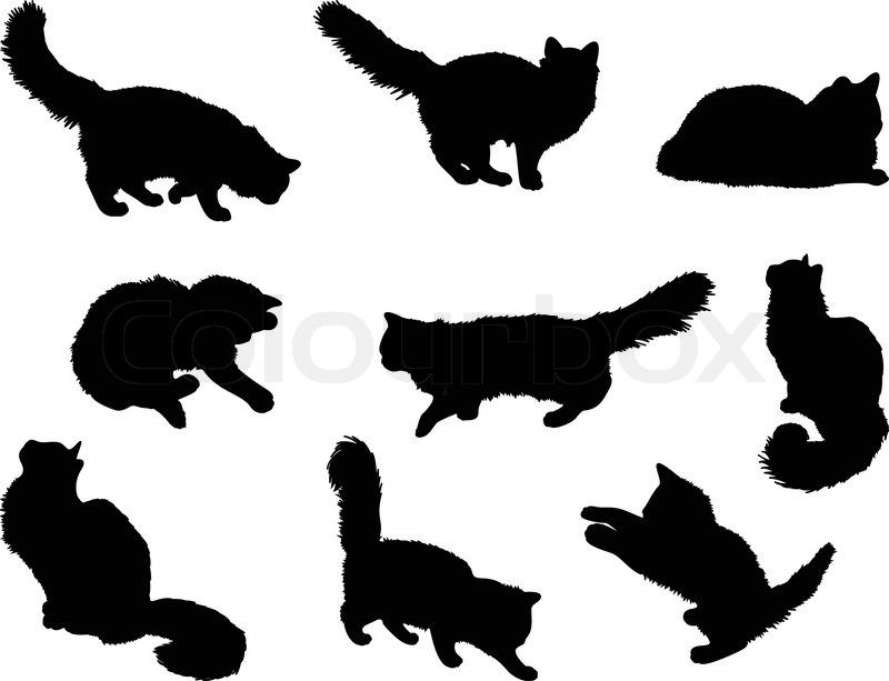 Cat Silhouette Laying On Back