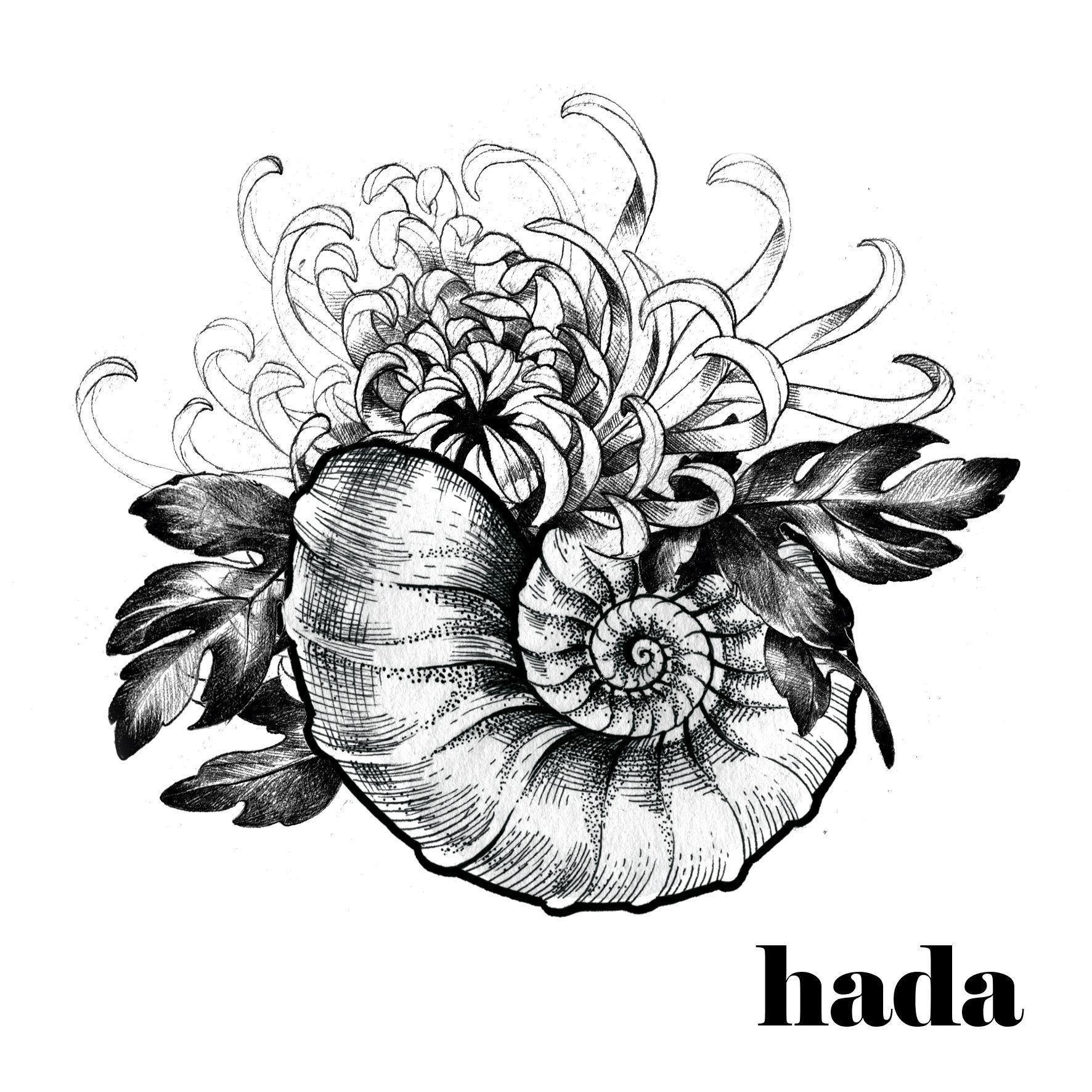 Hada Tattoo Artwork Seashell And Chrysanthemum Reserved Project Artwork Chrysanthemum Coquillage Dessin Tatouages De Coquillage Tatouage Chrysantheme