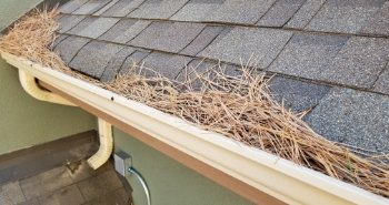 You Will Be Surprised How Affordable Leaffilter Is Gutter Protection Cleaning Gutters Gutters