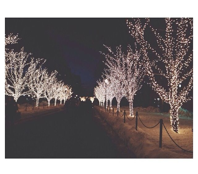 Christmas lights at Columbia university
