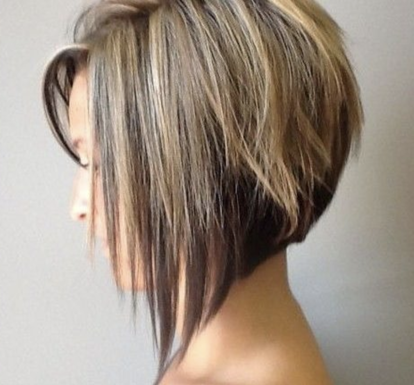 A Little Concave Bob Thick Hair Styles Straight Thick Hair Hair Styles