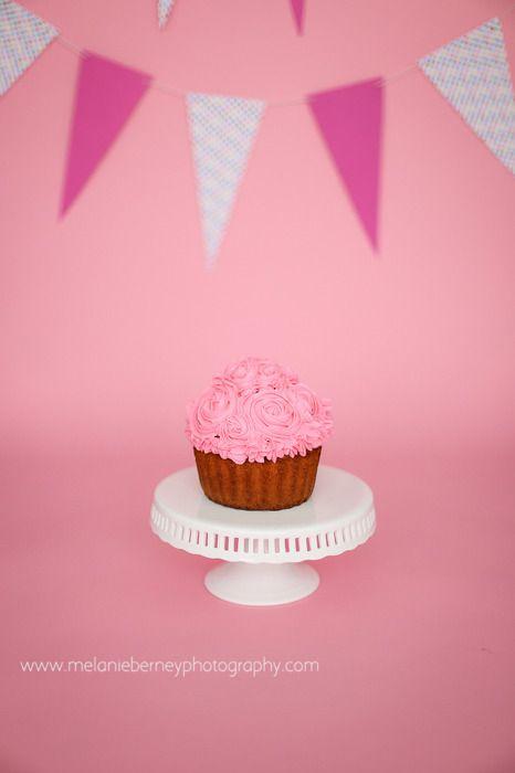 Richmond VA First Birthday Cake Smash Pink Grey Cupcake Girl