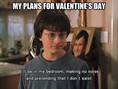 Harry Potter Randomness Book 2 Chapter 355 Valentines Day Memes Single Valentines Day Memes Valentines Day Funny Meme
