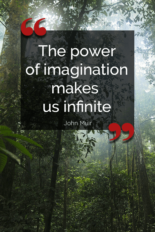 Inspirational Quote The Power Of Imagination Makes Us Infinite