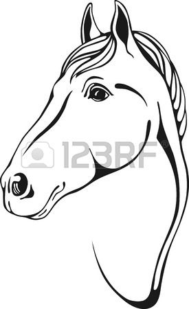 Black And White Outlines Of Horse Head In Skertch Style Horse Outline Horse Head Horses