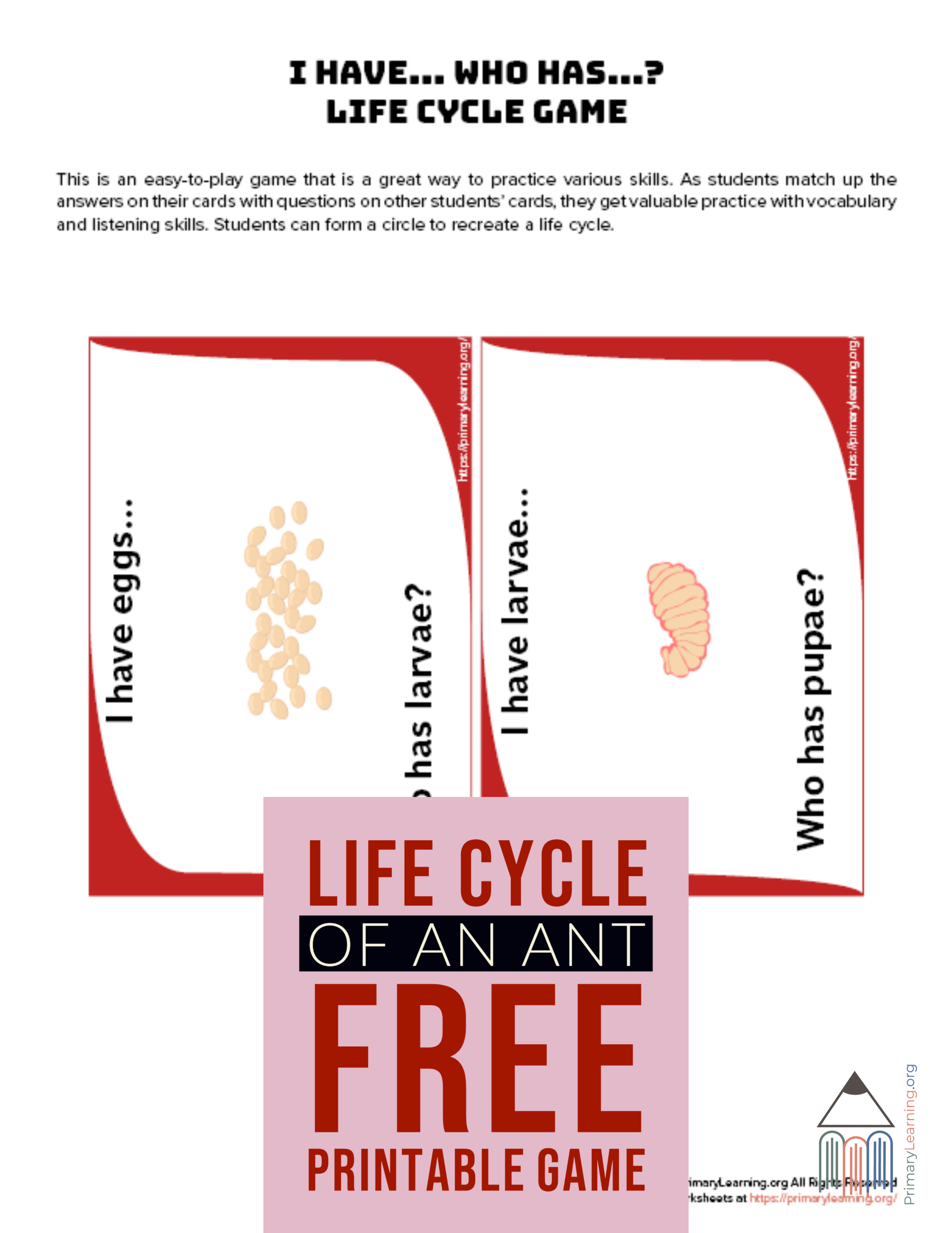 Ant Life Cycle Game