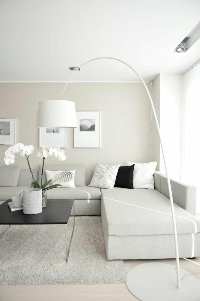 Modernes Wohnen Weisse Orchideen Sehr Schon Aussehen D R E A M