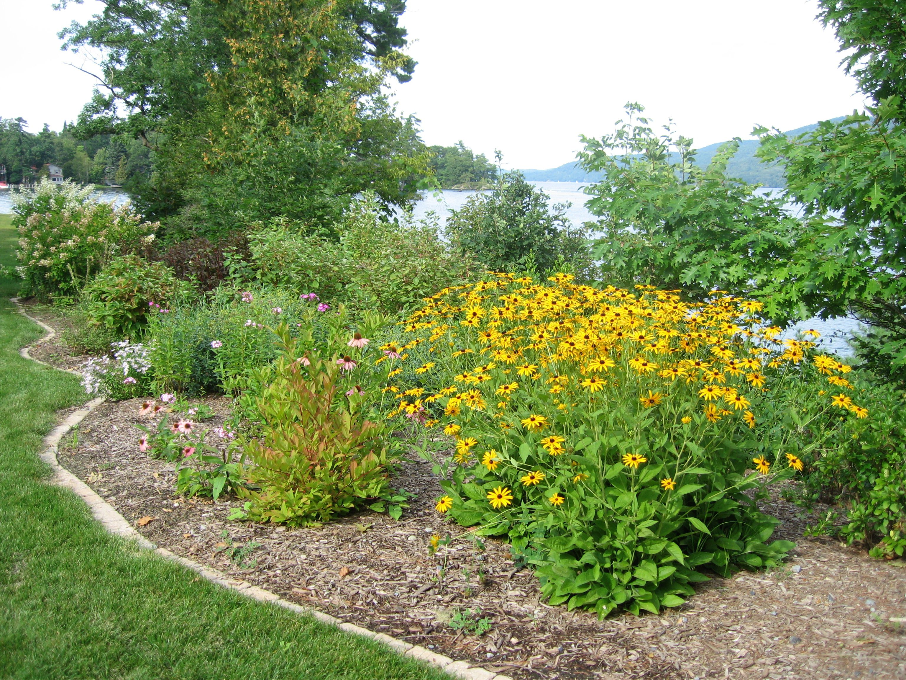 Great to hide septic mound. Septic mound landscaping