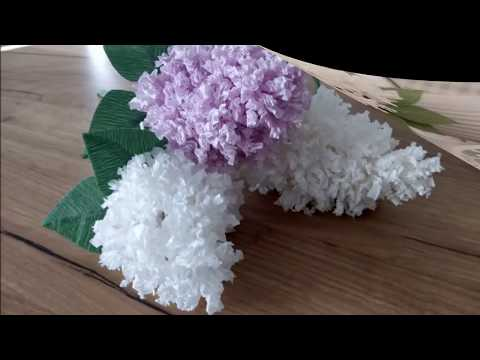 Jak Zrobic Kwiatek Bzu Z Bibuly Tutorial Paper Flower Diy Youtube Paper Flower Tutorial Paper Flowers Crepe Paper Flowers Tutorial