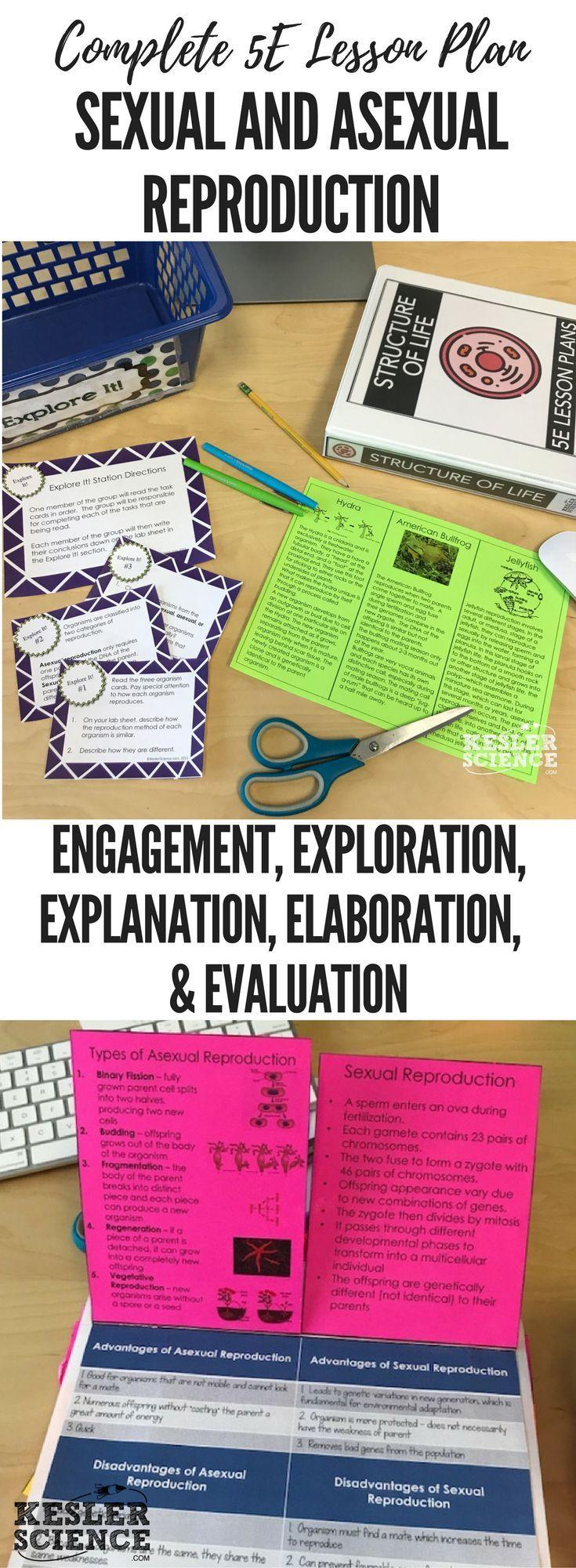 worksheet Asexual Reproduction Worksheet Middle School sexual and asexual reproduction 5e lesson plan science notebooks plan
