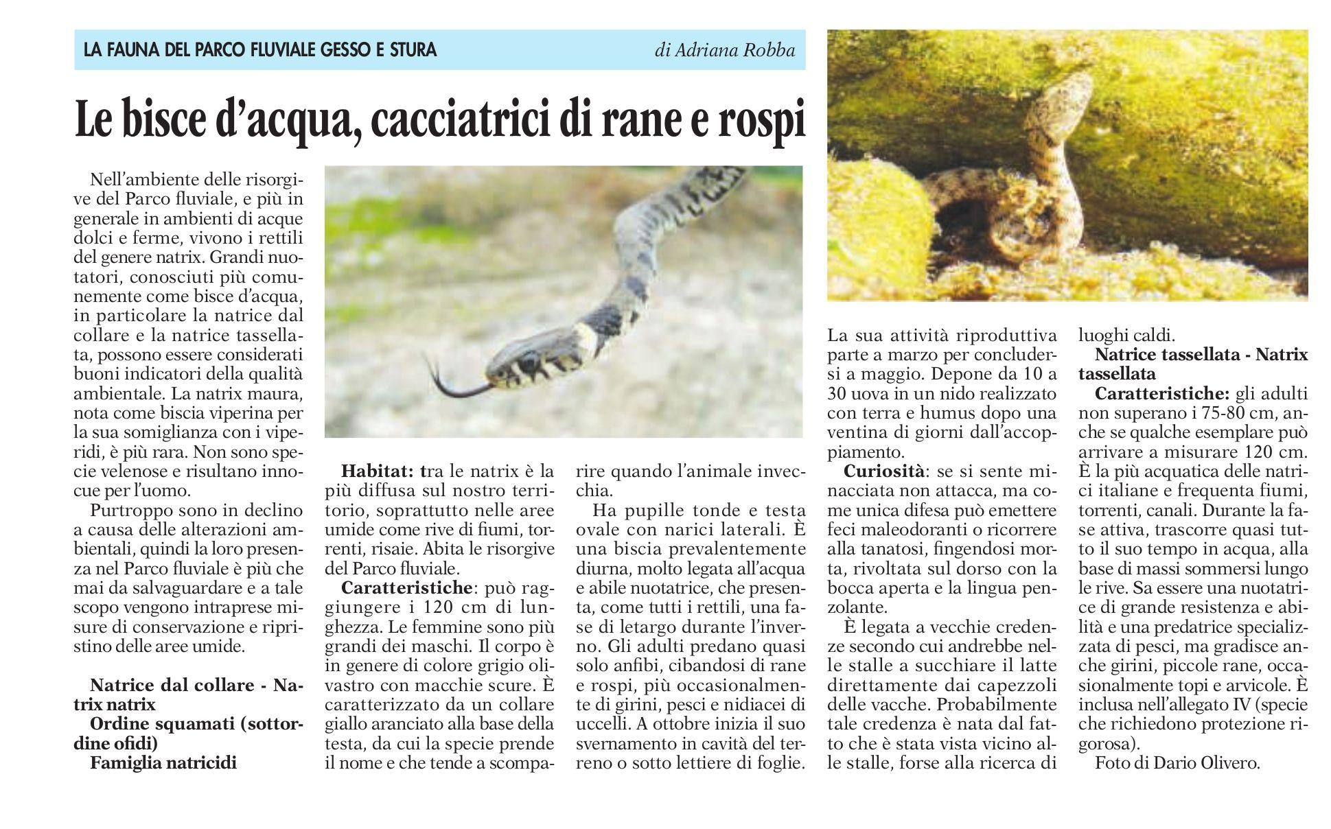 La fauna del parco fluviale articolo di Adriana Robba (La Guida 1 maggio 2015)