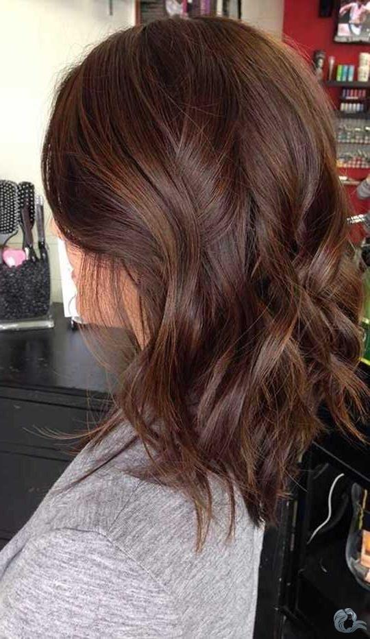 15+ bob brown hair 2019 –