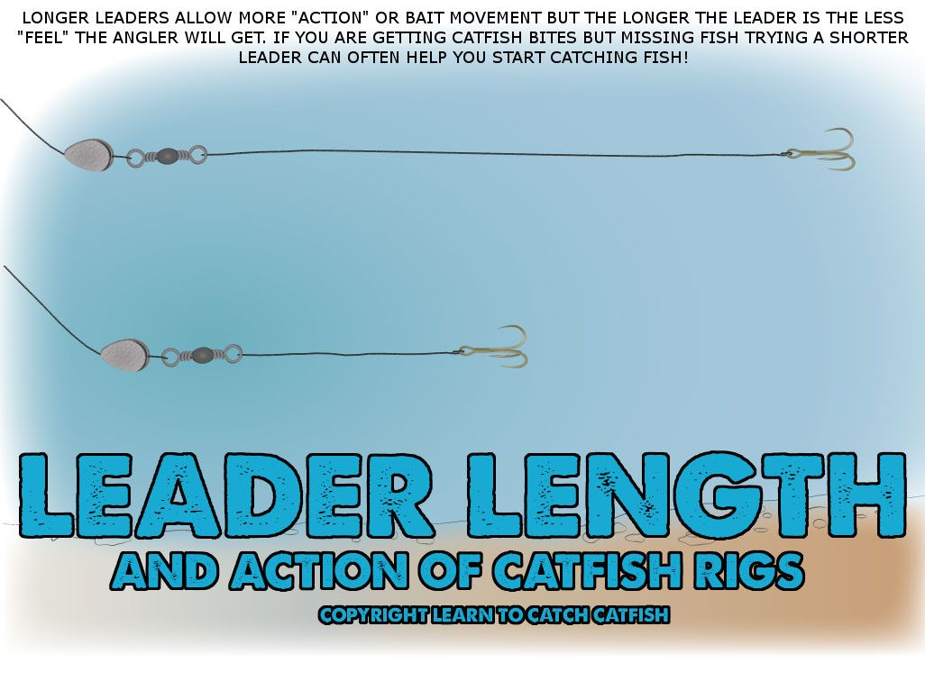 Not sure how long your leaders should be on your catfish rigs - line leader
