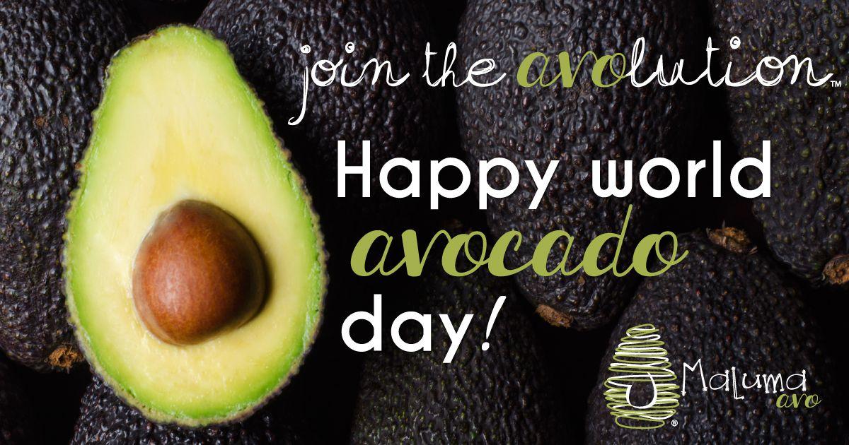 Happy World Avocado Day Avocado Day Happy