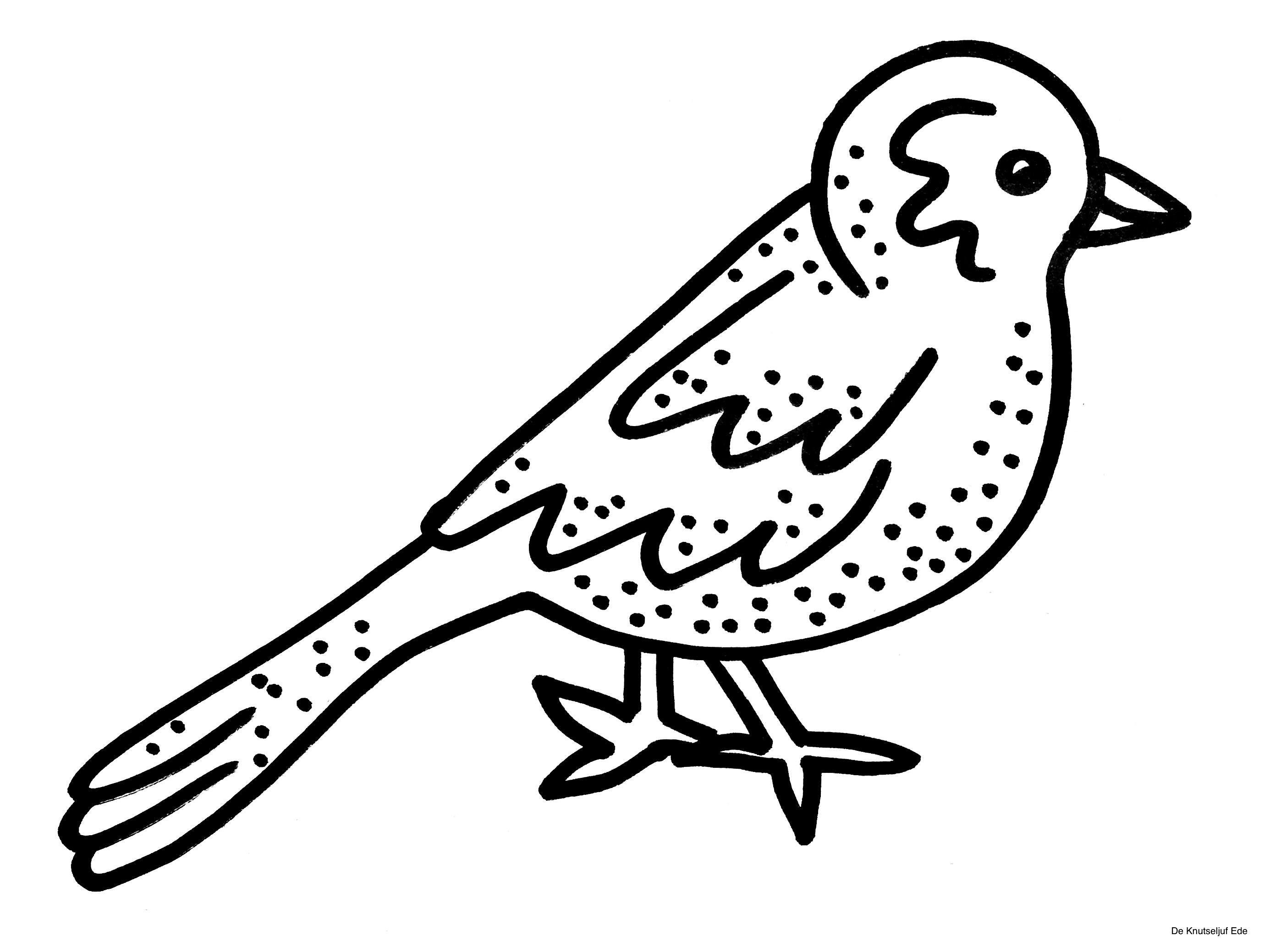 Kleurplaten Vogels.Kleurplaten Vogels Kleurplaten Kleurplaten Vogels Kleurplaat