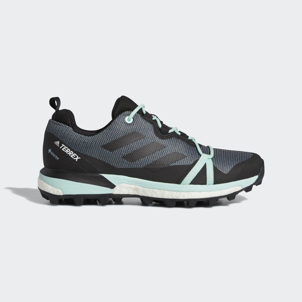 Adidas five ten terrex skychaser lt gtx womens hiking