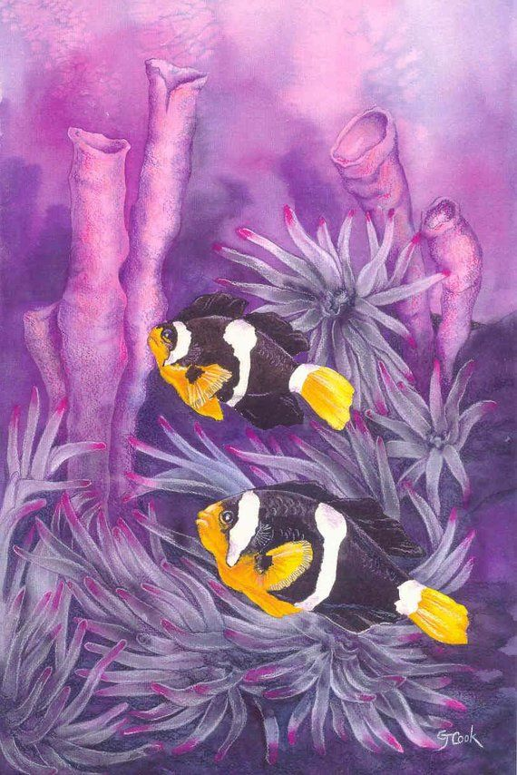 Yellow Tailed Anemone Fish Painting Art Saltwater Aquarium Purple
