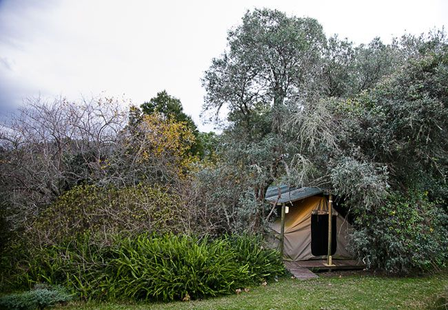 Peace Of Eden In Knysna Garden Route House Styles Knysna