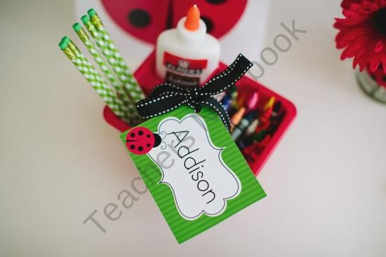 Lovely Ladybugs Multipurpose Labels from Schoolgirl Style on TeachersNotebook.com (4 pages)  - Lovely Ladybugs Multipurpose Labels
