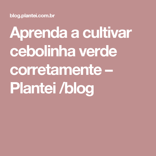 Aprenda a cultivar cebolinha verde corretamente – Plantei /blog