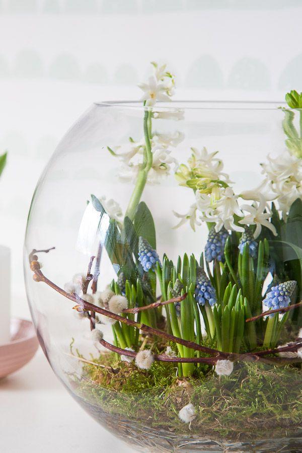 fr hlingserwachen mit blumenzwiebeln dekorieren spring. Black Bedroom Furniture Sets. Home Design Ideas