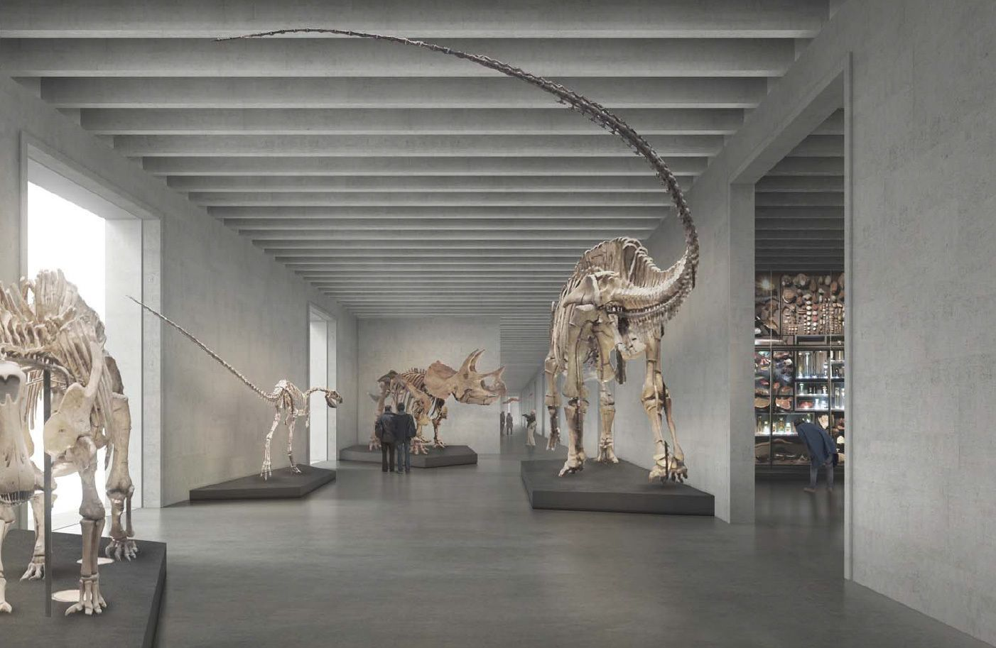 Caruso St John Architects New Museum Of Natural History Basel 3 Jpg 1402 913 New Museum Natural History Museum