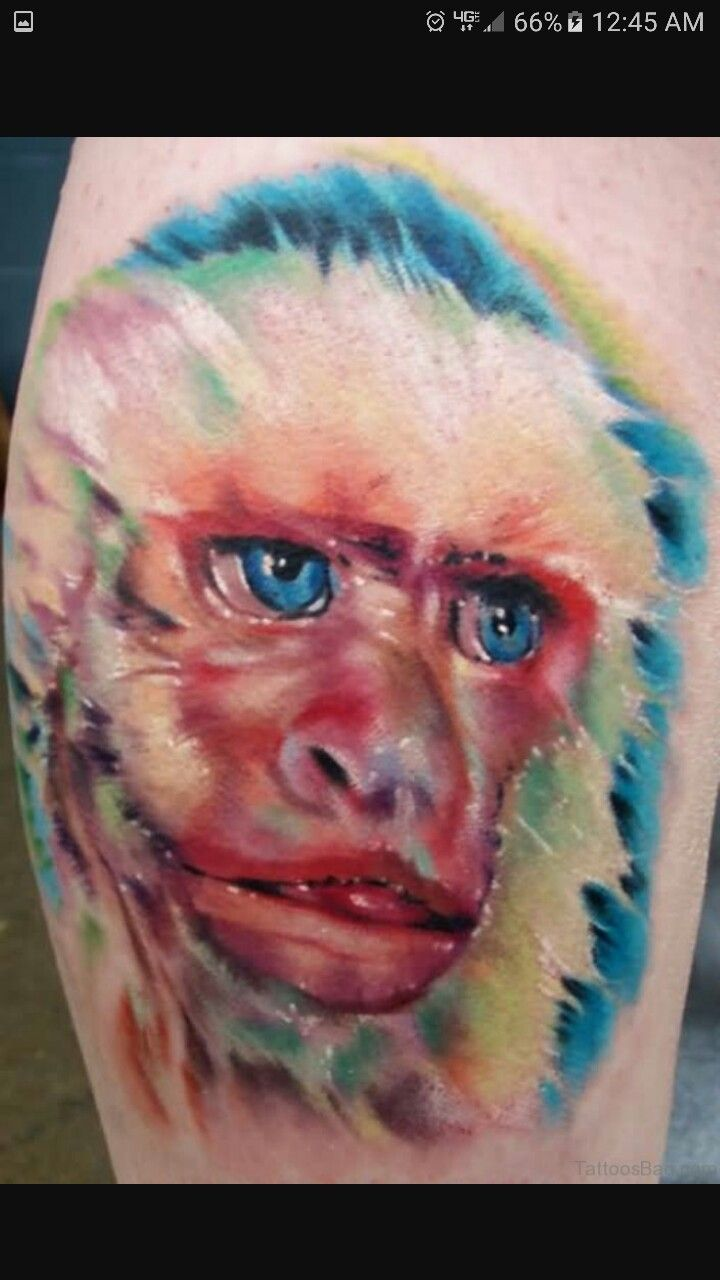 Capuchin with images monkey tattoos color tattoo